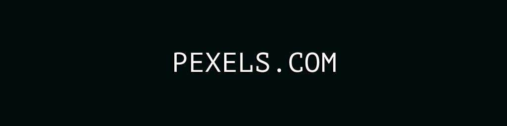 pexels.com - Freie Bilder und Videos